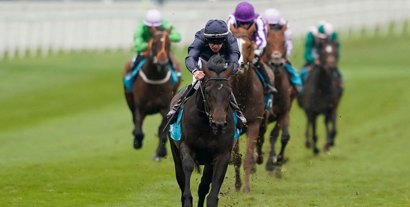 Sir Dragonet is among the Epsom Derby runners