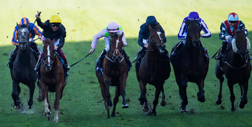 Stradivarius features in our Glorious Goodwood tips