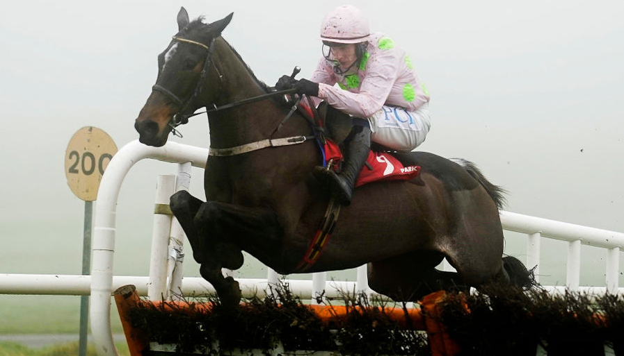 Cheltenham 2020 tips: Five Irish fancies for this year's Festival