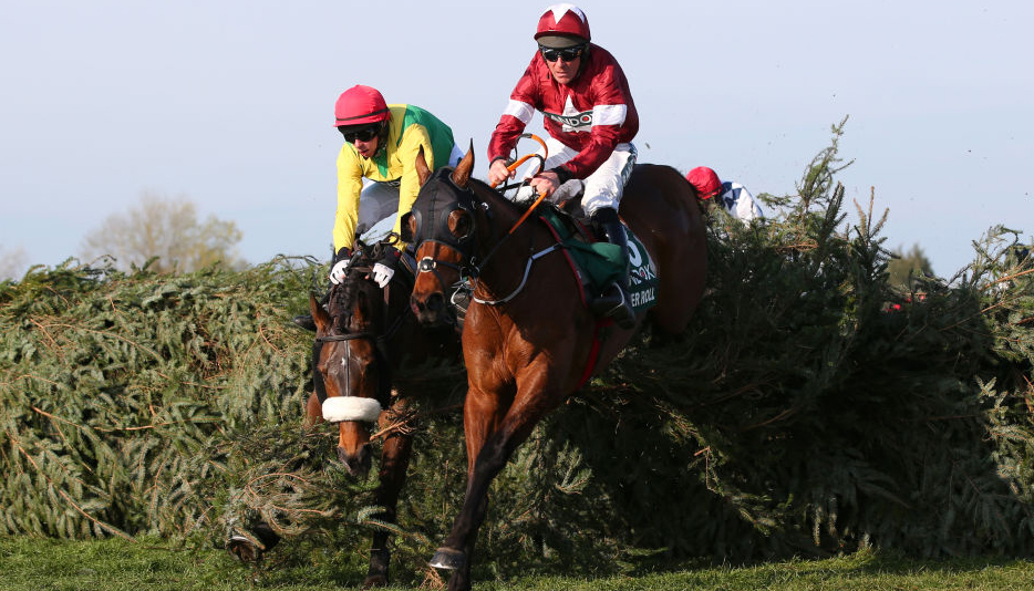 Grand National 2020 tips: Three alternatives to Tiger Roll