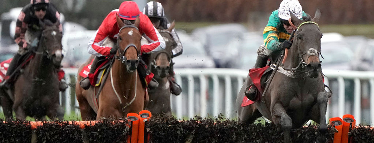 Epatante is favourite among the Champion Hurdle runners