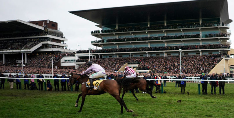 Pentland Hills features in our Cheltenham Festival tips