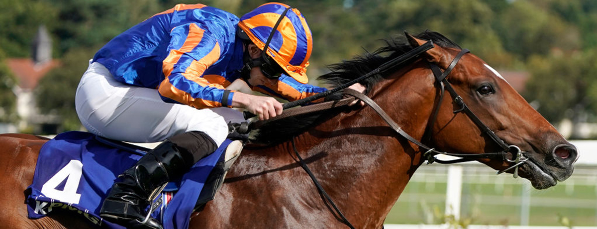 Epsom Derby 2020 tips, horse racing preview, Mogul