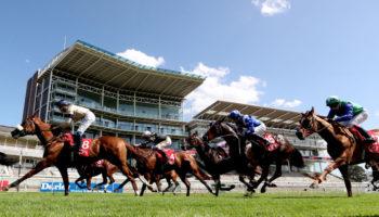ITV Racing tips: York, Chester and Sandown selections