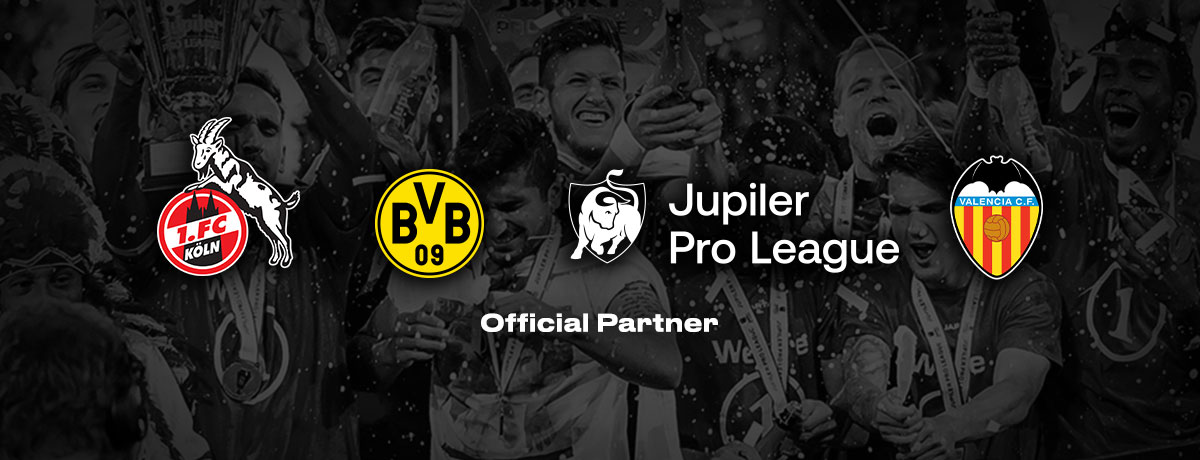bwin Official Partners | Sponsorships