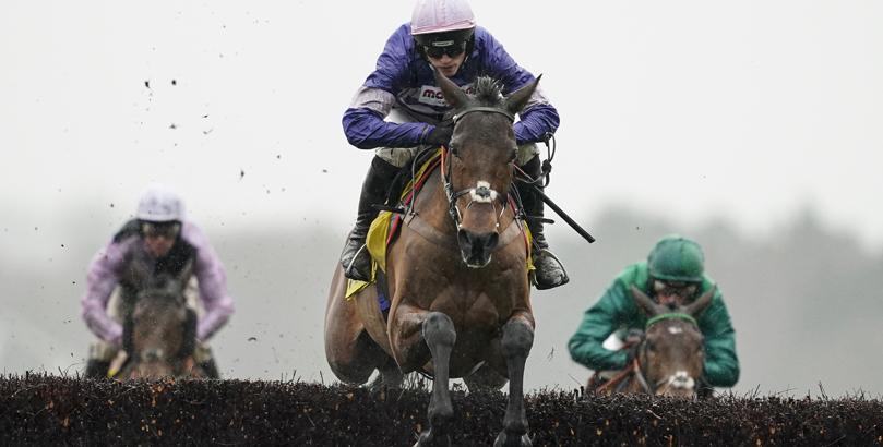 King george horse race betting explained dodatek do csgo lounge betting