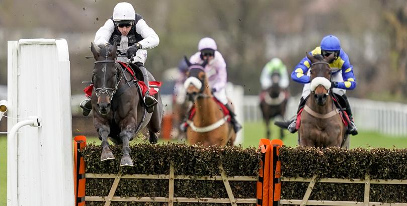 Cheltenham Festival tips, horse racing
