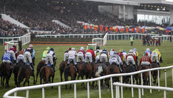 Punchestown Festival tips: Eight great Saturday selections