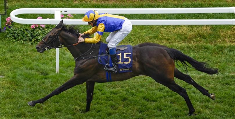 Glorious Goodwood tips, horse racing