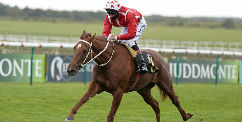 ITV Racing tips, horse racing