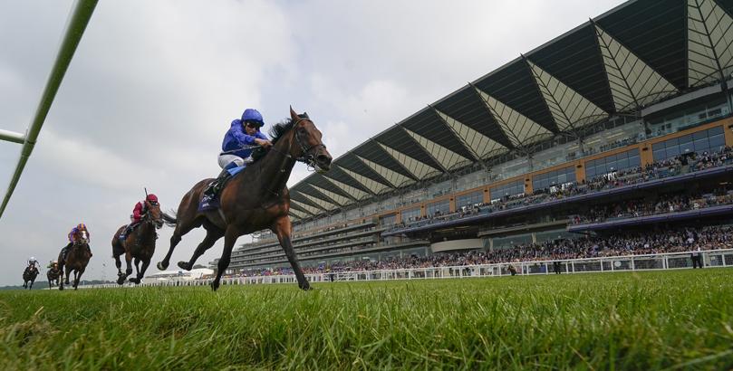 British Champions Day tips, horse racing