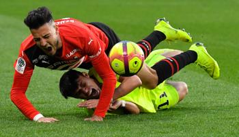 Stade Rennais – Lille OSC : 100% de victoire pour Stephan