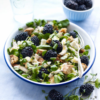 Special Chicken & Blackberry Salad