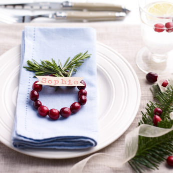 Festive Cranberry Place Holders