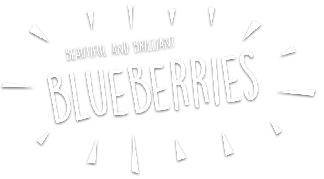 Blueberries Uk