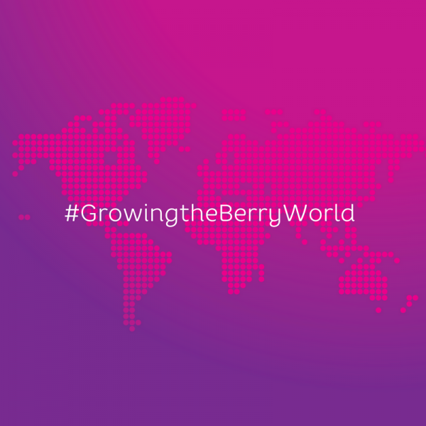 Growingthe Berry World Sq