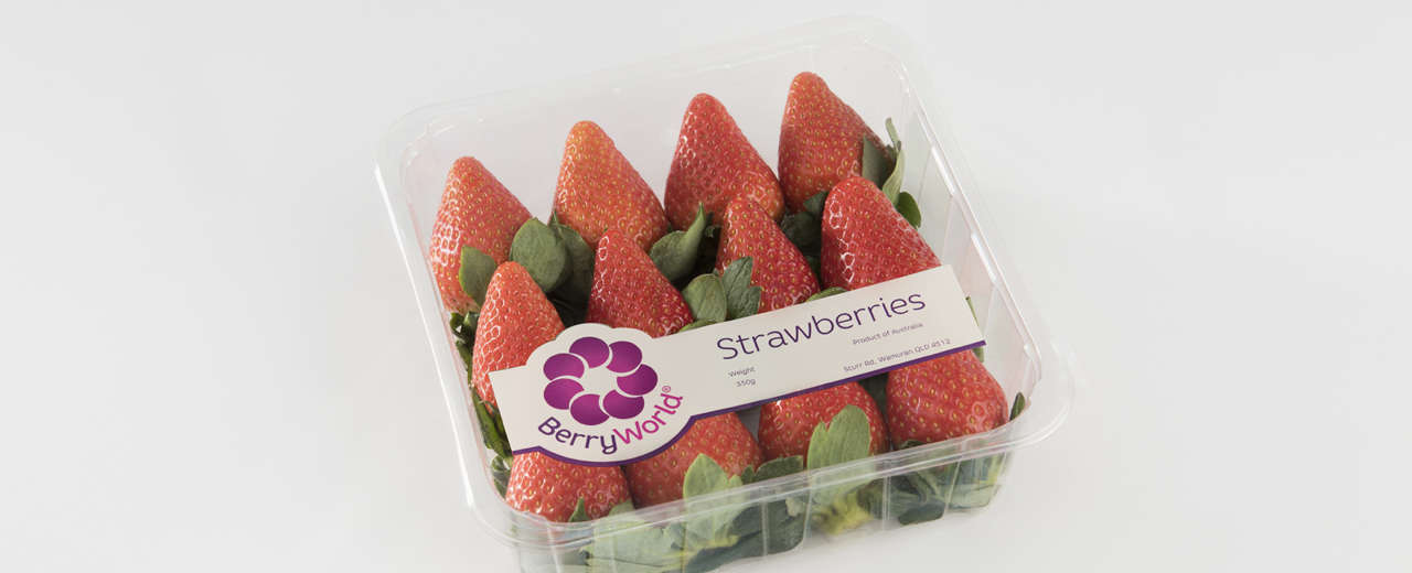 BerryWorld strawberries promise love at first bite