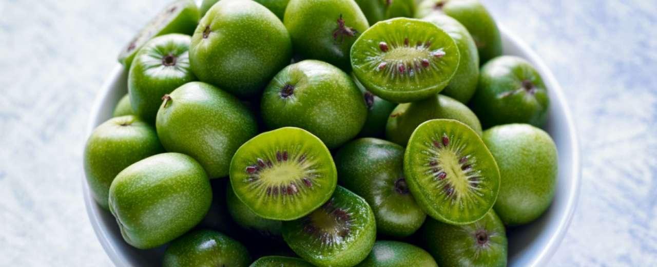 Start of the UK Kiwi Berry Season