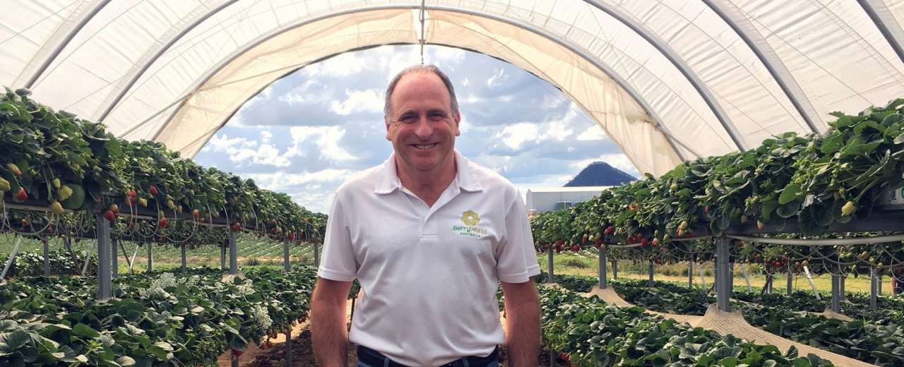 Specialist appointed to oversee berry expansion into Tasmania
