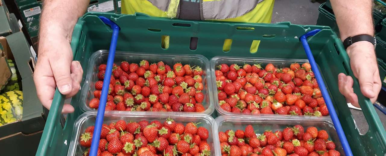 BerryWorld partners with FareShare over Christmas to provide the equivalent of 20,000 meals this winter