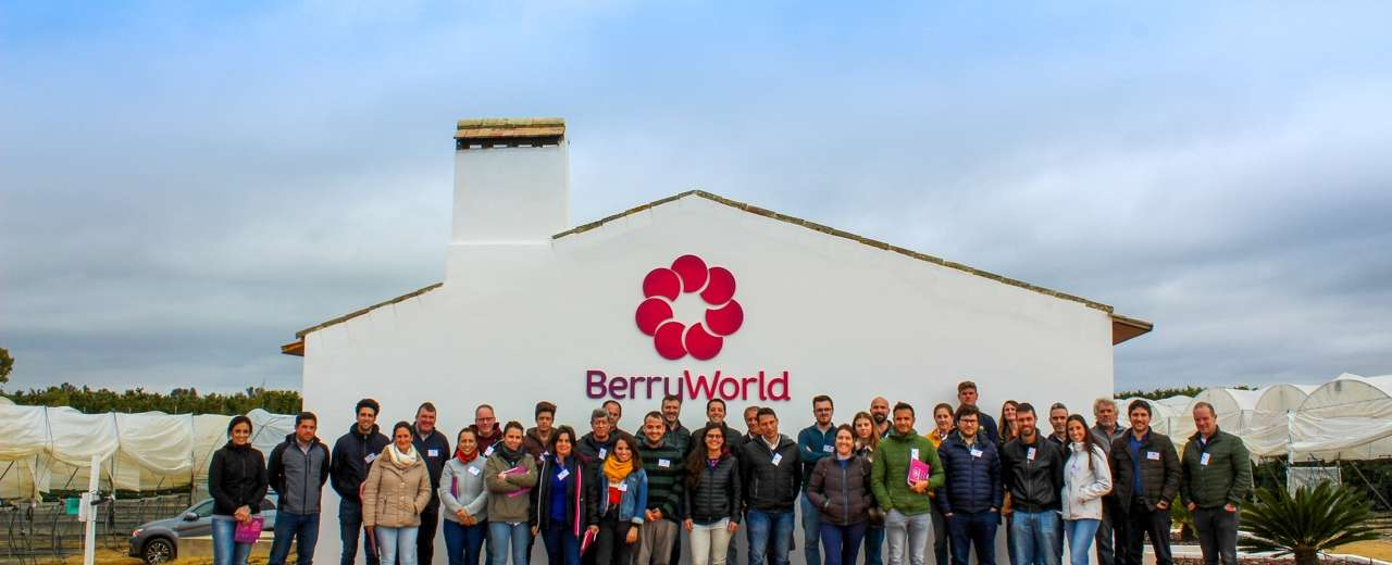 BerryWorld Spain unites growers for 2020 vision