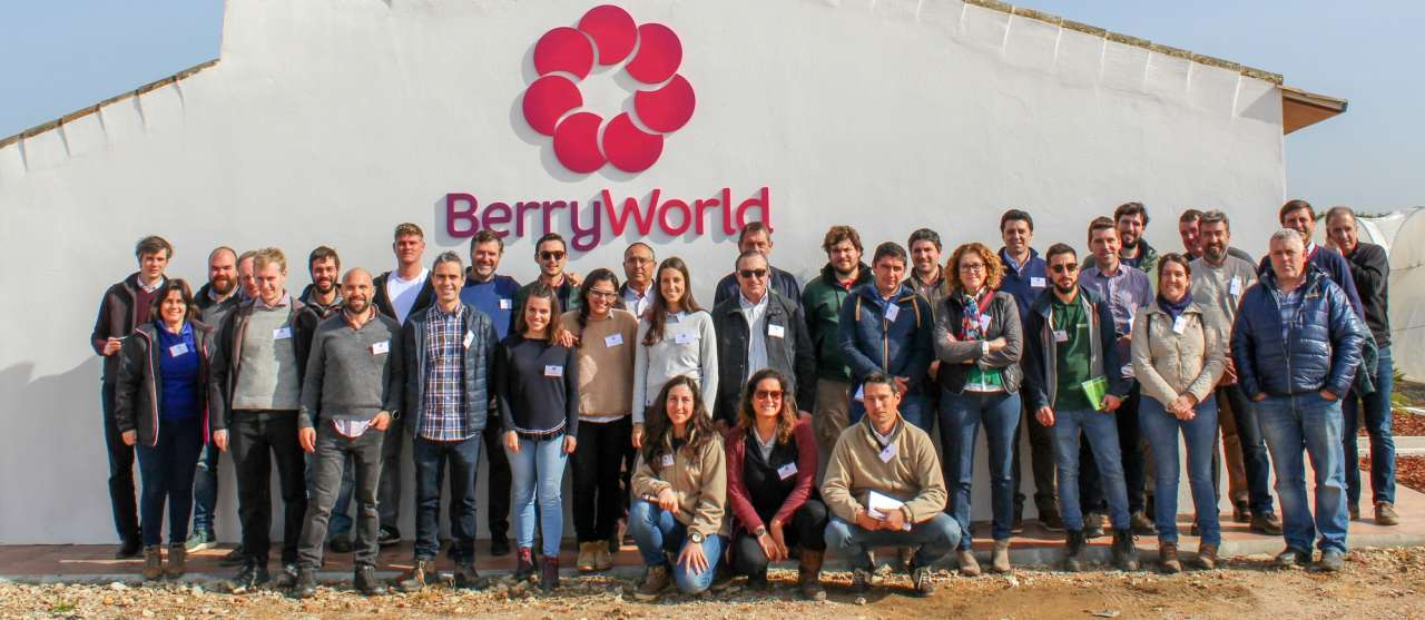 BerryWorld unite growers & ideas at R&D site