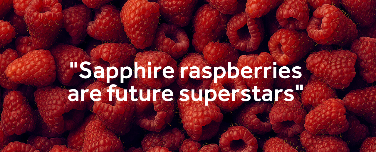 Marks & Spencer Select Sapphire Raspberries for TV Campaign
