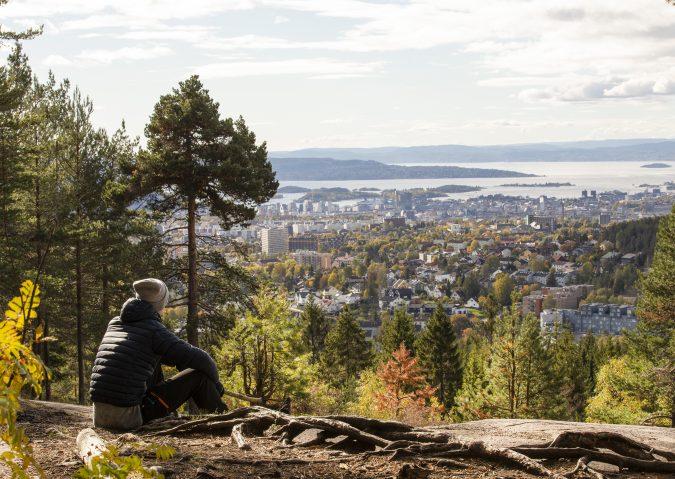Kortreist utsiktsglede på Årvollåsen