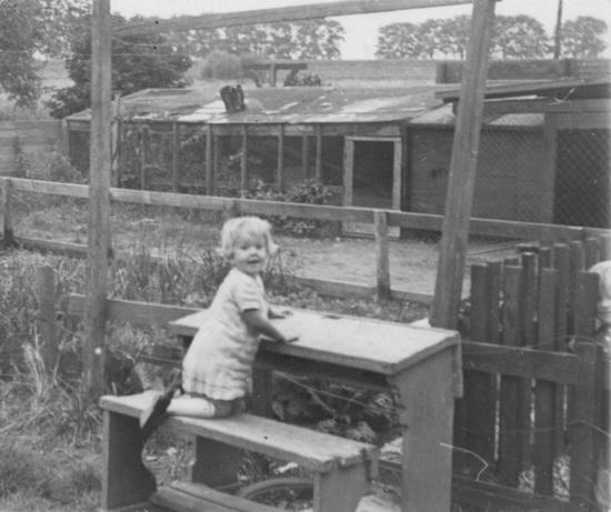 Fortweg 0049 Schelvis Annie 1940 met hondenhokken Nieuwdorp