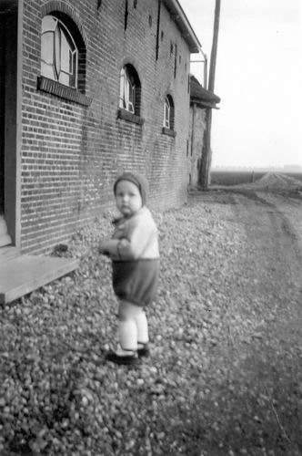 Aalsmeerderweg O 0228 1952 Boerderij Bakker met Jan Vogel 03