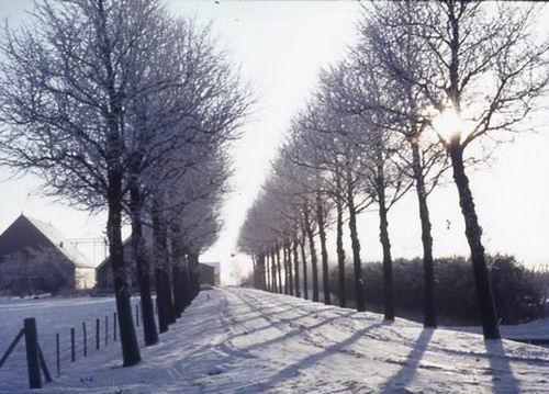 Aalsmeerderweg O 0564 19__ Boerderij Pruissen in de Sneeuw