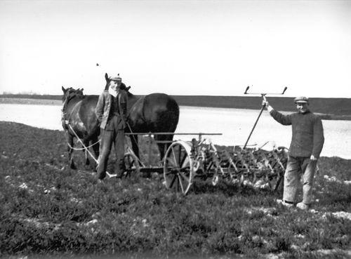 Blom Jan 1909 19__ met Schoffelmachine achter 2-Span