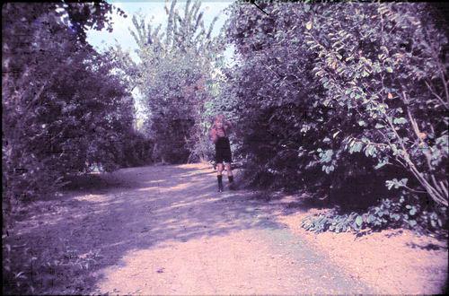 <b>ZOEKPLAATJE:</b>Boslaan 0000 Wandelpark 1949-50 03_Exp