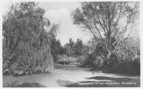 Boslaan Wandelpark 1952 Achtersloot