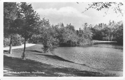 Boslaan Wandelpark 1952 Middenvijver