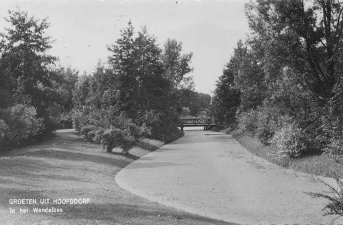 Boslaan Wandelpark 1953 Achtersloot in 1963 uitvoering
