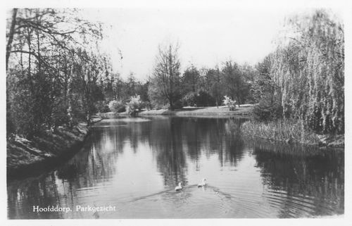 Boslaan Wandelpark 1954 Eilandje