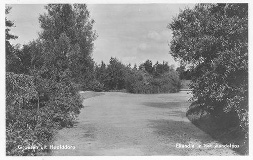 Boslaan Wandelpark 1955 Middenvijver en Eilandje