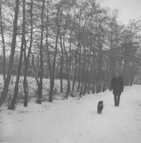Boslaan Wandelpark 195_ in de Sneeuw 02
