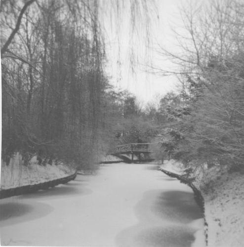 Boslaan Wandelpark 195_ in de Sneeuw 03