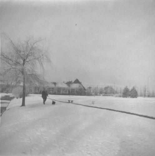Boslaan Wandelpark 195_ in de Sneeuw 05