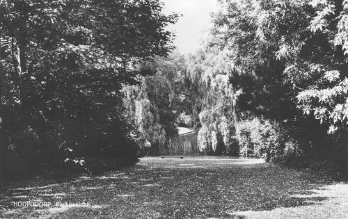 Boslaan Wandelpark 1966