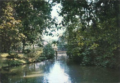 Boslaan Wandelpark 1972 Voorsloot kleur 03