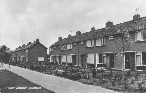 Bosstraat 1968