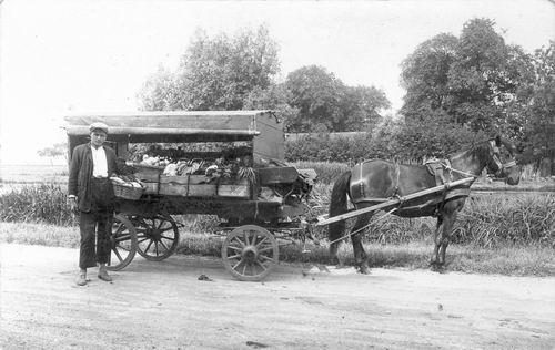 Buis Hendrika 1914 19__ Onbekend Groenteboer 01