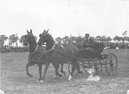 Bulk Cornelis 1885 19__ op Concours met Paarden Labda en Gusta 01