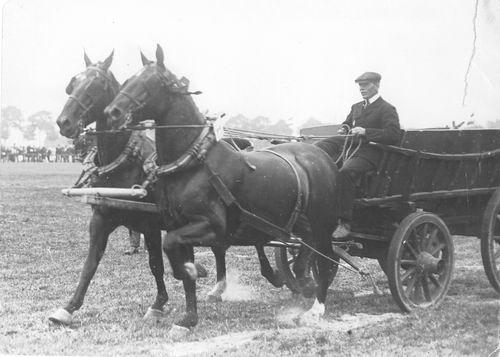 Bulk Cornelis 1885 19__ op Concours met Paarden Labda en Gusta 02