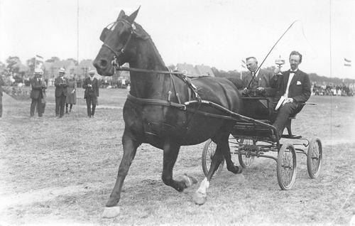 Bulk Cornelis 1885 19__ wint Beker met Paard Labda 02