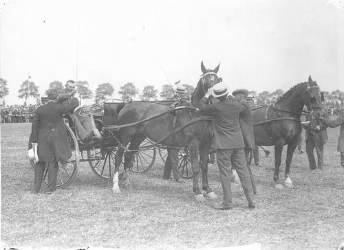 Bulk Cornelis 1885 19__ wint Gouden Zweep met Paard Barones