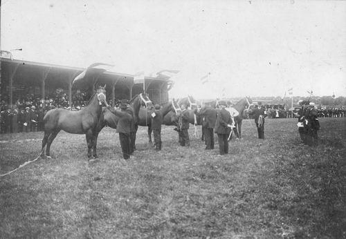 Concours Hippique 1909 met Betsy en Astra
